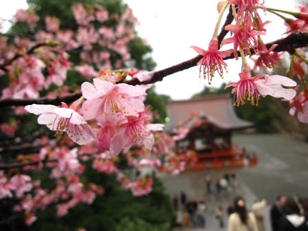 tsurugaoka(5).jpg