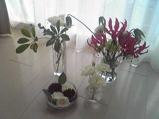 いただきものの花