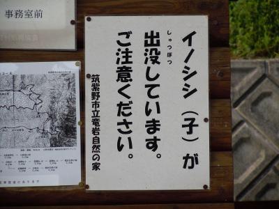 tatuiwa-5.jpg