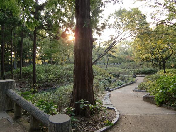 長居植物園5