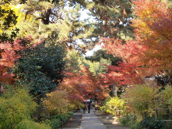 京都御所の神社2