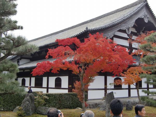 京都東福寺の紅葉の写真2