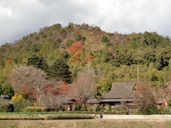 嵐山2-4