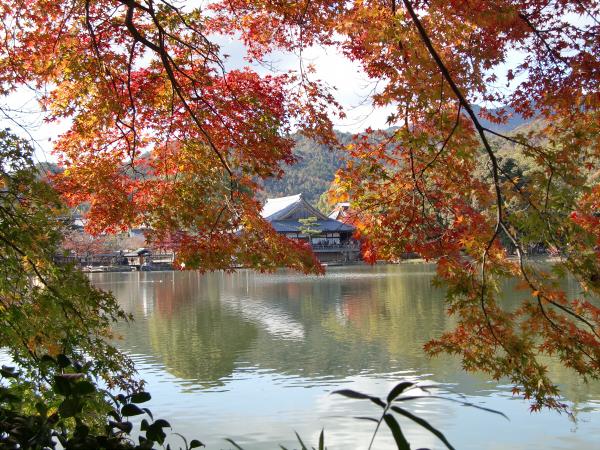 嵐山の写真4-1