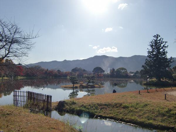 嵐山の写真4-3