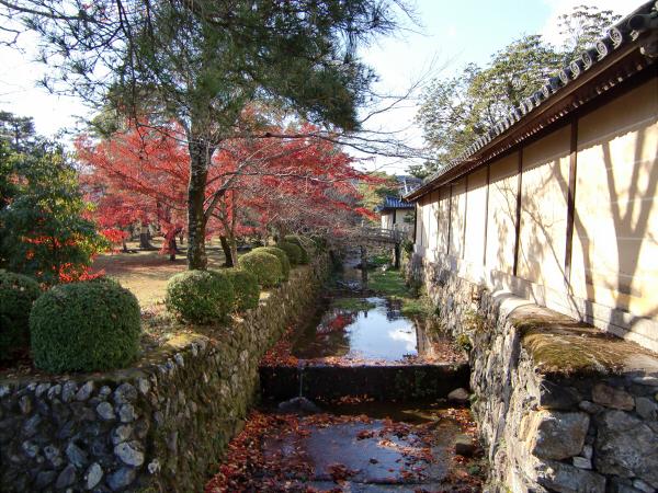 嵐山の写真4-5