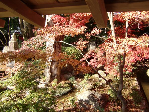 京都嵐山の写真3-5