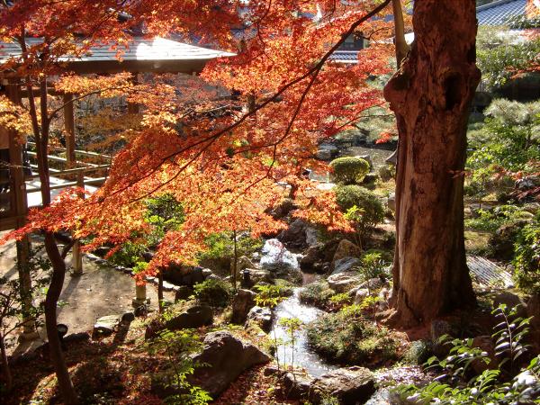 京都嵐山の写真3-6