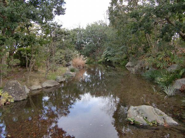 万博記念公園2-3
