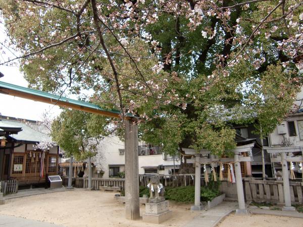 桃谷周辺の神社2