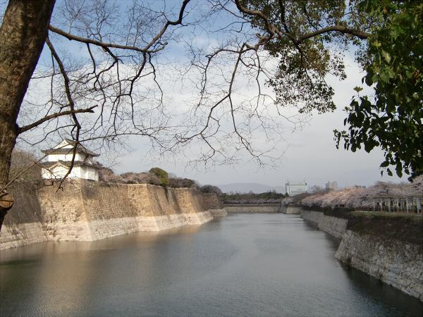 桃と桜と大阪城3