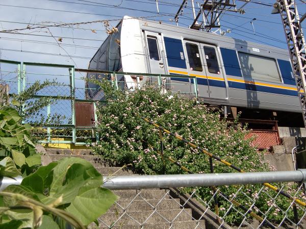 大阪付近の電車色々鉄道色々09