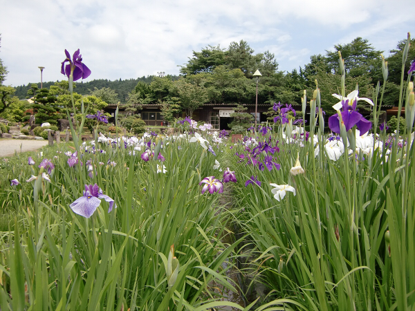 兵庫三田の永澤寺1-5