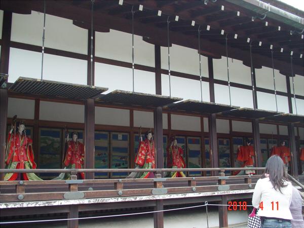 京都御所の枝垂桜5