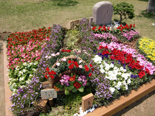 花博記念公園鶴見緑地の花壇07