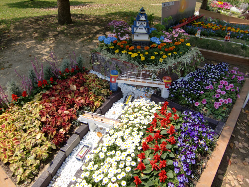 花博記念公園鶴見緑地の花壇08