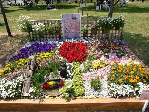 花博記念公園鶴見緑地の花壇11
