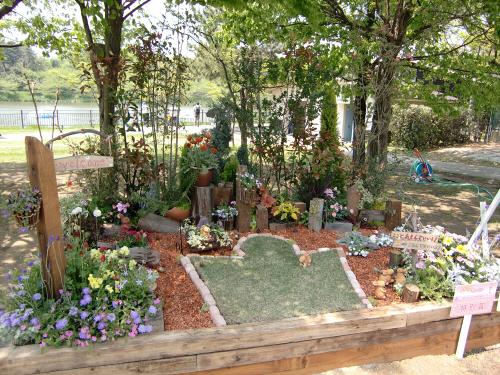花博記念公園鶴見緑地の花壇14