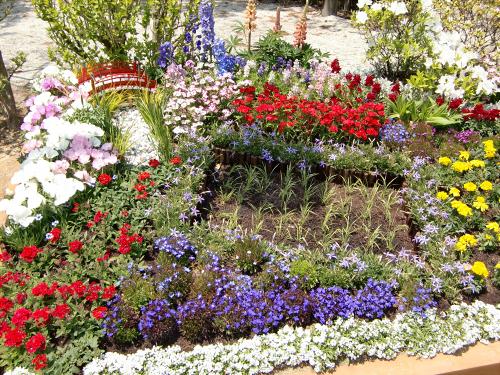 花博記念公園鶴見緑地の花壇15
