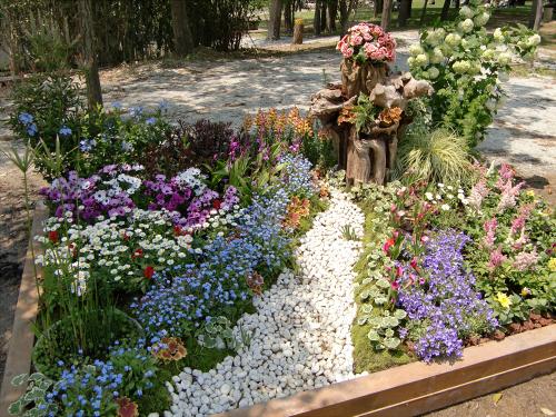花博記念公園鶴見緑地の花壇16