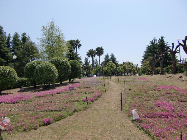 花博記念公園の風景写真2-2