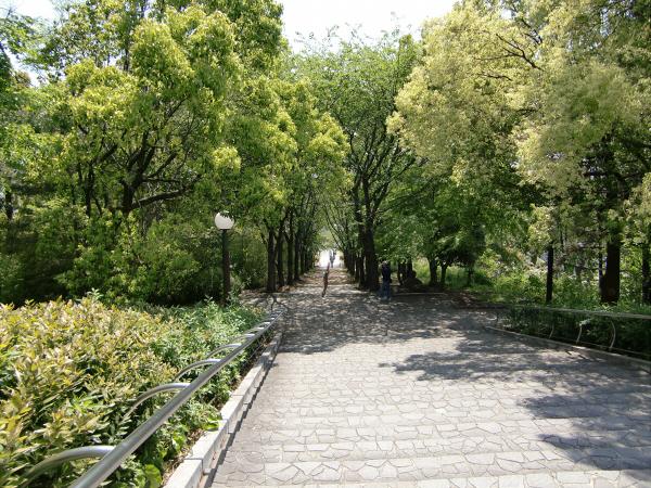 花博記念公園の風景写真2-3