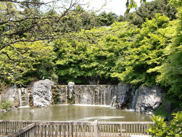 花博記念公園の風景写真2-5