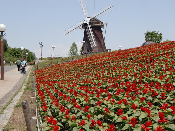 花博記念公園の風景写真3-1