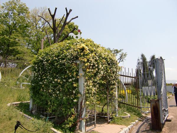 花博記念公園の風景写真3-3