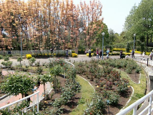 花博記念公園の風景写真3-5