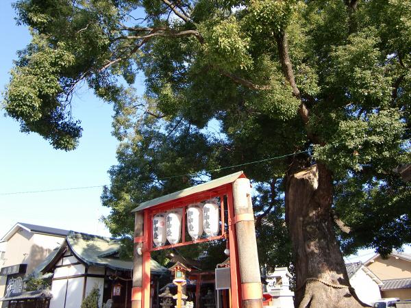 東大阪【花園ラグビー場周辺】02