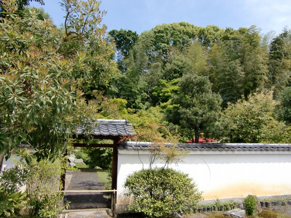 京都清水寺周辺で撮った写真1-4