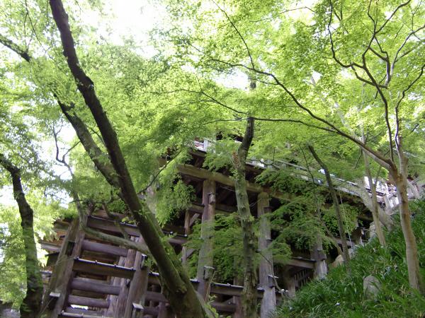 京都清水寺周辺で撮った写真3-2