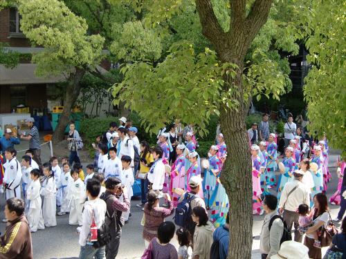 神戸まつりパレードの写真11