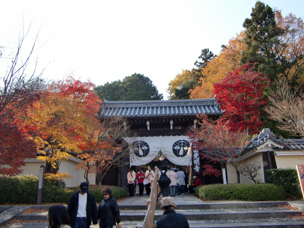京都光明寺の紅葉02