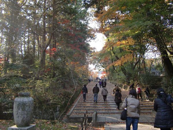 京都光明寺の紅葉04