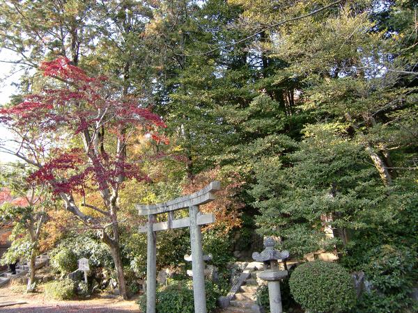 京都光明寺の紅葉09