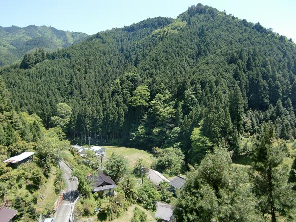 高野山で撮った写真1-01
