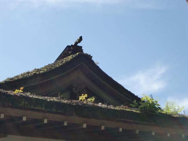 金剛峯寺の写真2-01