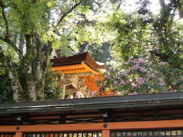 金剛峯寺の写真2-08