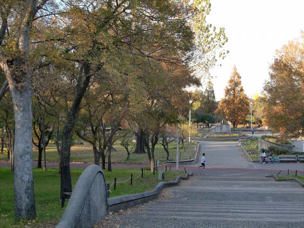 久宝寺周辺の景観など05
