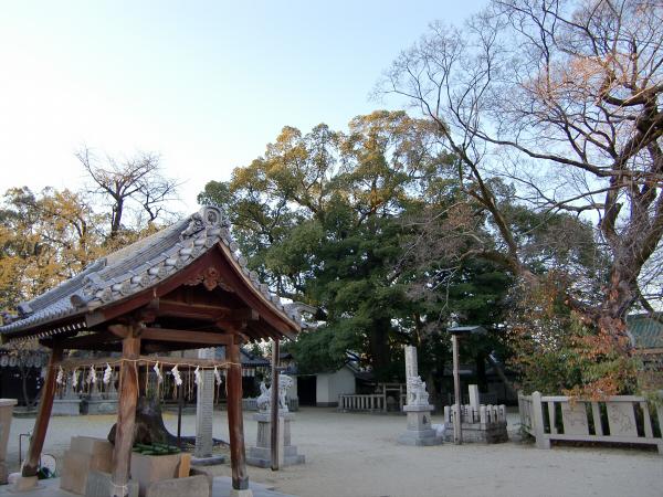 久宝寺周辺の景観など10