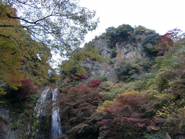 大阪箕面の紅葉12