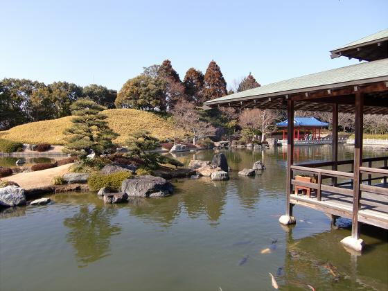 百舌鳥大仙公園の日本庭園01