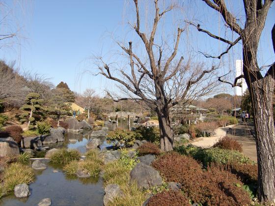 百舌鳥大仙公園の日本庭園03