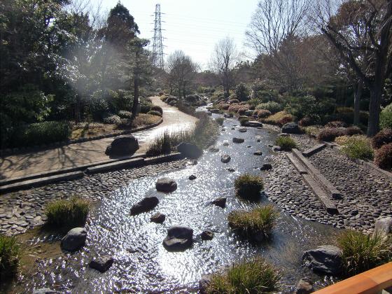 百舌鳥大仙公園の日本庭園04