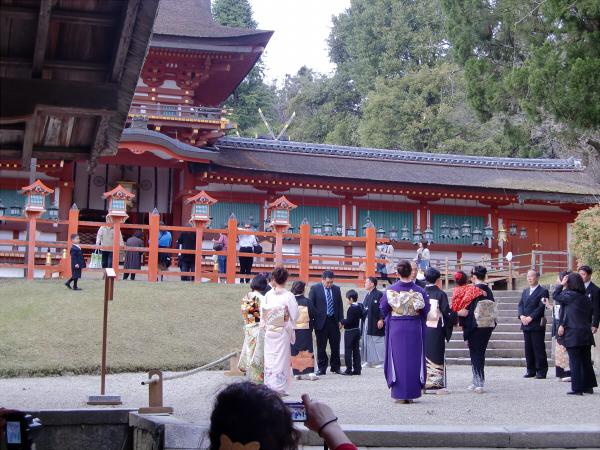 奈良公園で桜と鹿見物2-4