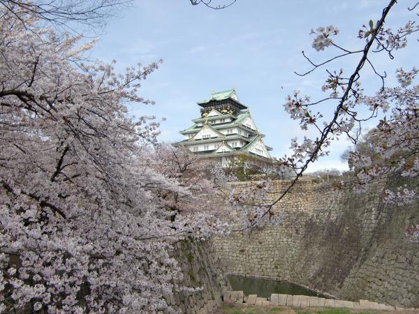 大阪城西の丸庭園の桜の写真5