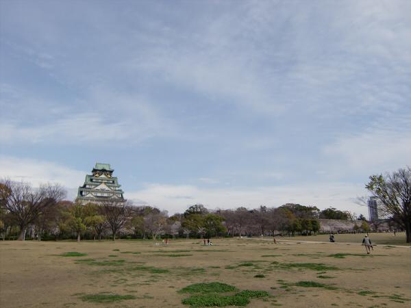 大阪城西の丸庭園の桜の写真6