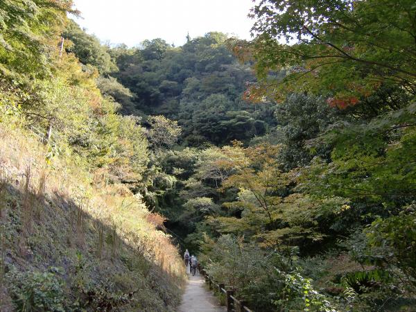 神戸布引ハーブ園15